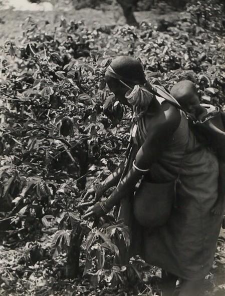 Kikuyu woman in Kiambu