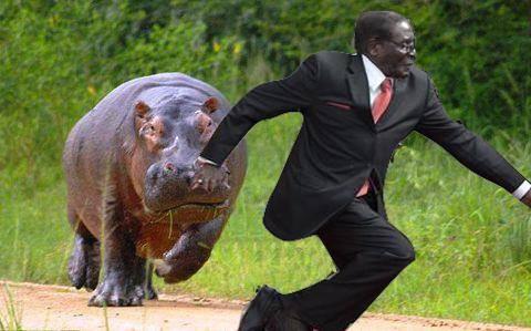 Mugabe Falls 11